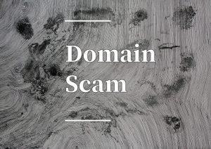 Domain Scam Awareness