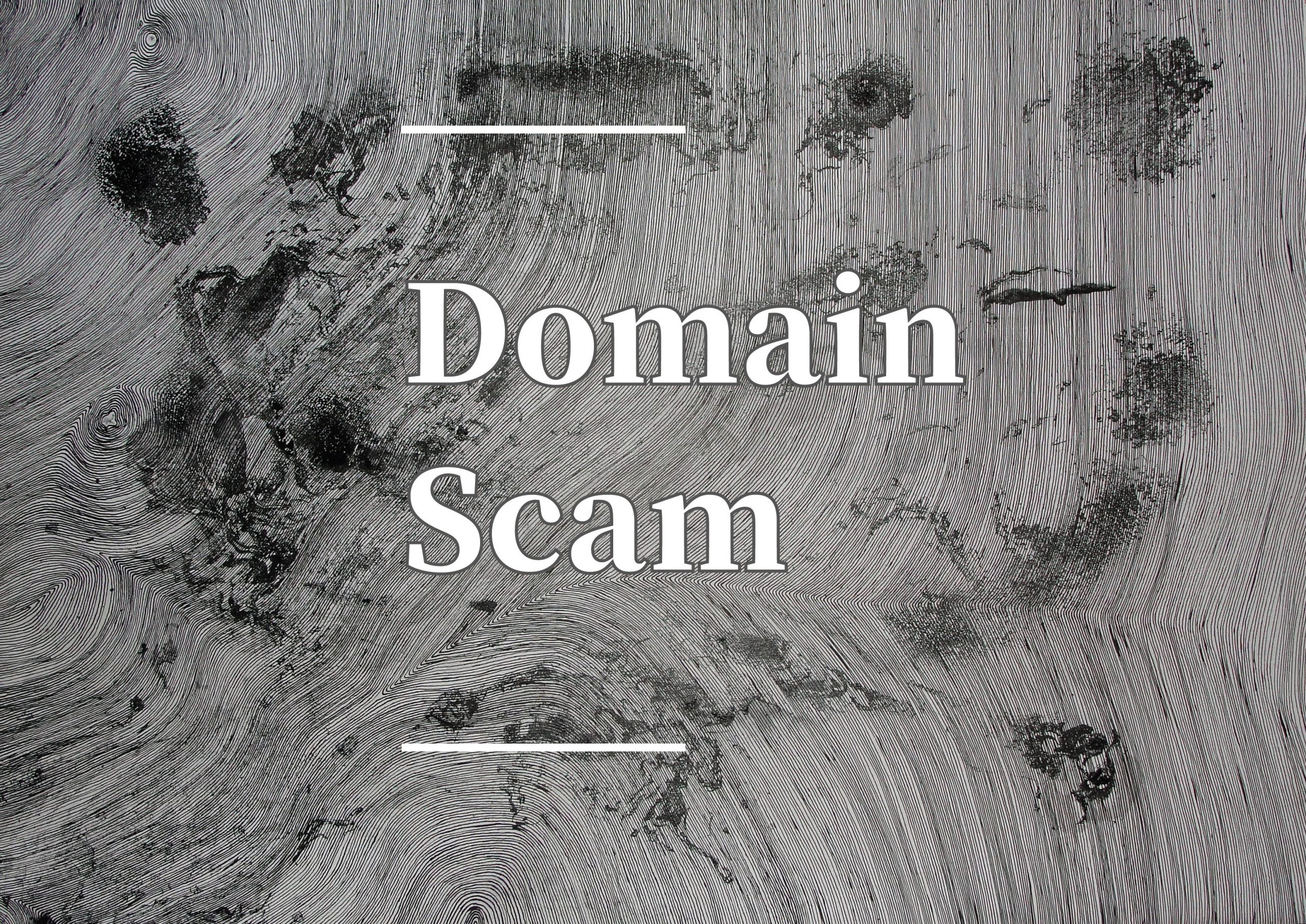 Domain Scam Awareness