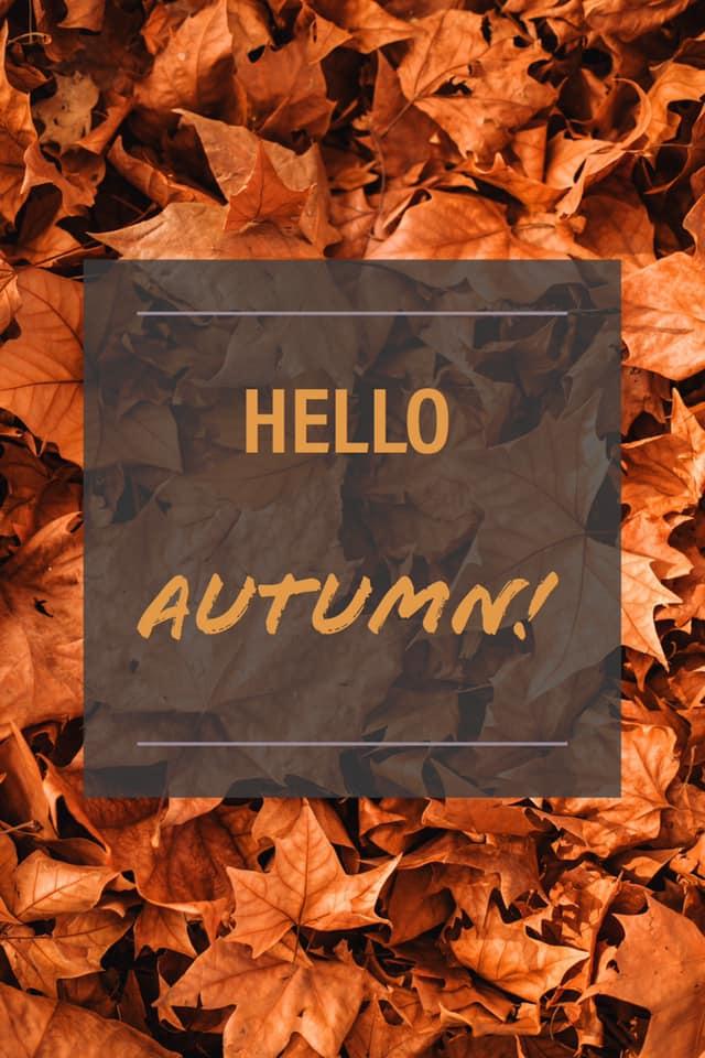 Fall Festivities in Buffalo!