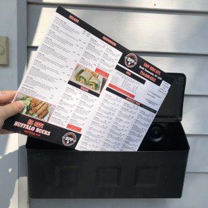 Every Door Direct Mailer (1000 Units)